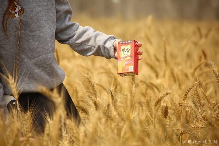 【台中大雅麥田】大雅小麥節,記得帶一罐麥香飲料來拍照! @小環妞 幸福足跡
