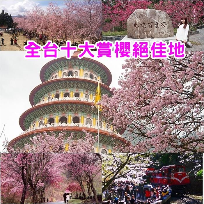 【全台灣賞櫻10大景點】春天櫻花季節.時間.地點,錯過等明年!