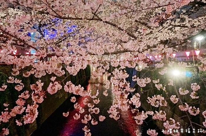 【東京夜櫻】目黑川賞櫻,時間.交通.花況.綿延4公里的櫻花隧道