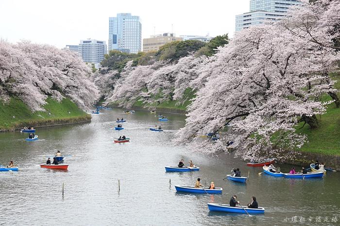 【東京賞櫻必去景點】千島之淵&靖國神社,最推薦的賞櫻花地點
