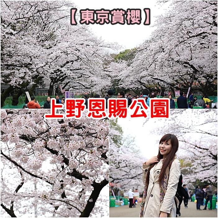 【東京賞櫻景點】上野恩賜公園,櫻花天花板!推薦賞櫻必去地點