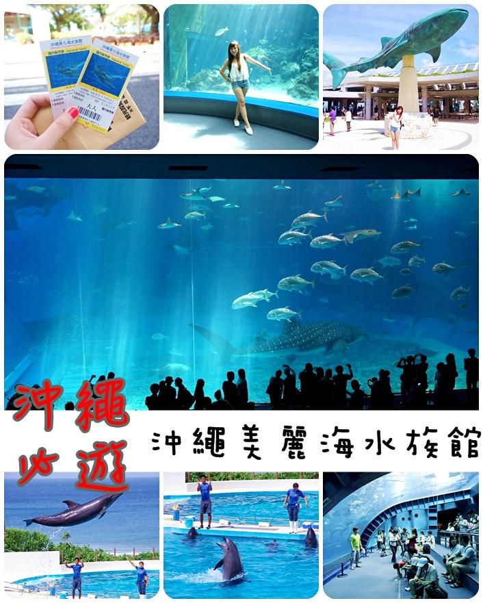 【沖繩水族館】沖繩美麗海水族館(必去景點),壯觀的黑潮之海,可愛的海豚表演【25】