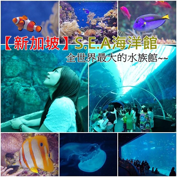 【新加坡景點(21)】S.E.A海洋館,全世界最大海底隧道,世界最大海底世界~