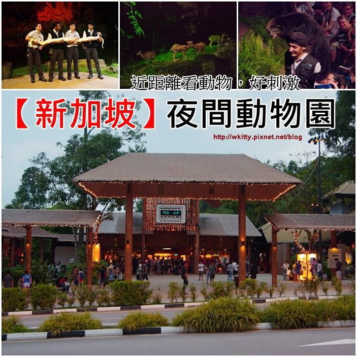 【新加坡景點(19)】夜間動物園,近距離晚上看動物,好刺激的體驗唷!