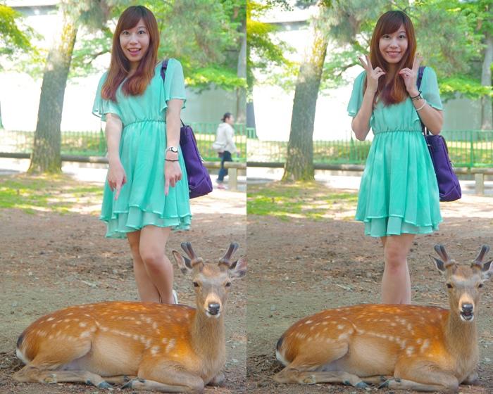 【奈良行程(27) 】奈良公園,東大寺,可愛又蠻橫的小鹿斑比我來了!