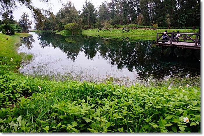 [台東景點推薦] 琵琶湖*台東森林公園 ♥ 美到讓人心醉,靜謐之美~