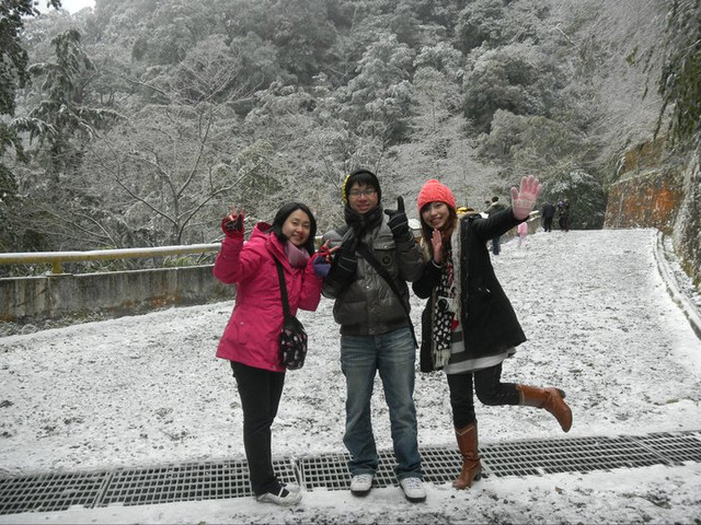 [玩♡桃園]拉拉山~我在台灣遇見雪❤