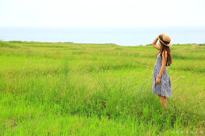 【花蓮豐濱景點】新社梯田,臨海夢幻搖曳的海梯田美景,私房!
