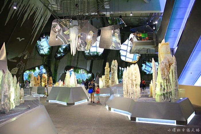 【新加坡濱海灣花園】超厲害巨大雙冷室攻略,新加坡必去景點 @小環妞 幸福足跡