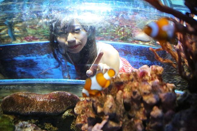 【曼谷海洋世界】暹羅海洋世界,超好玩景點!東南亞最大的水族館 @小環妞 幸福足跡