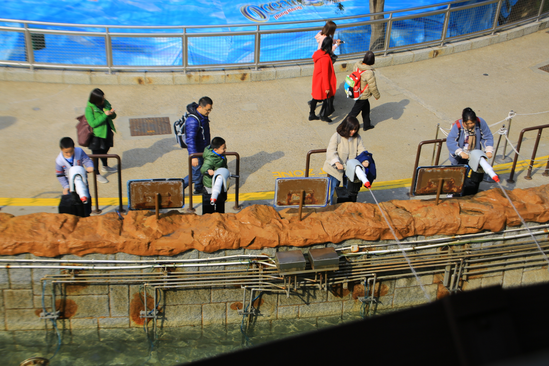 【香港海洋公園】必買必玩,便宜門票優惠,交通,App攻略,超好玩 @小環妞 幸福足跡