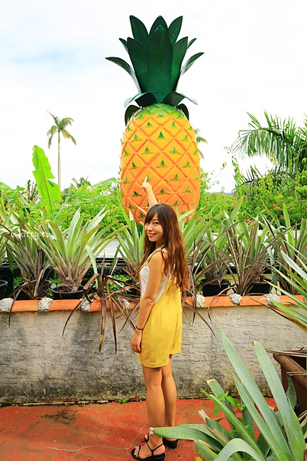 【名護鳳梨園】沖繩雨天備案,沖繩自由行下雨也可逛的鳳梨園景點 @小環妞 幸福足跡