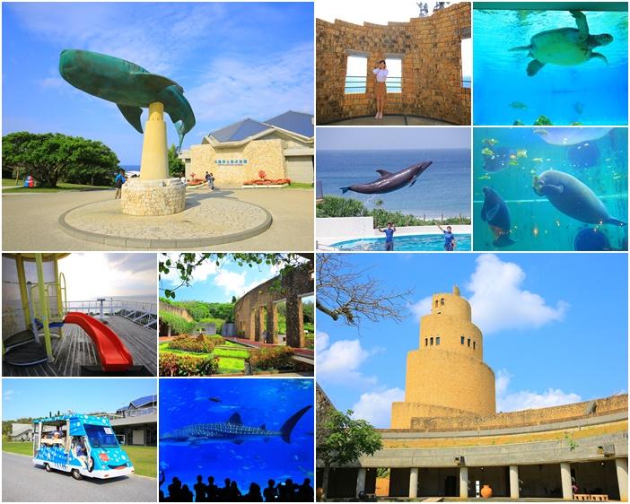 海洋博公園-沖繩北部行程安排-教你沖繩水族館怎麼玩一整天 @小環妞 幸福足跡