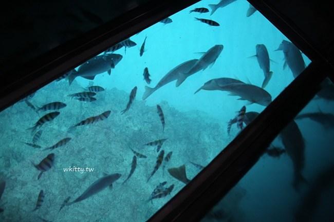沖繩Busena海中公園一次玩玻璃船(海底觀光船)+海中展望塔 @小環妞 幸福足跡