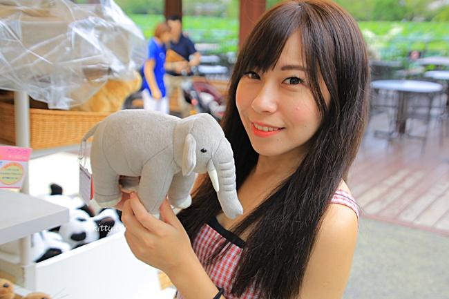 【上野動物園】推薦東京親子旅遊必去景點,可愛熊貓,懸掛式列車 @小環妞 幸福足跡