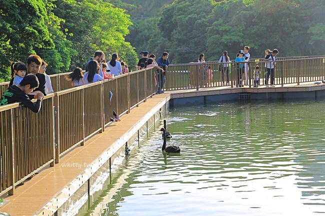 【沖繩兒童王國】沖繩動物園推薦,親子自由行必逛,便宜又好玩 @小環妞 幸福足跡