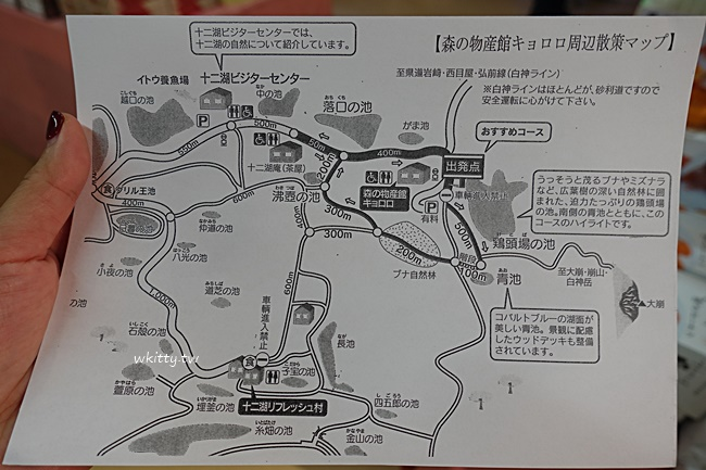 【青森十二湖青池】日本東北五能線必訪景點,白神山夢幻藍寶石 @小環妞 幸福足跡