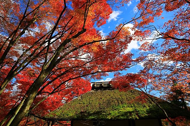 【京都賞楓行程】常寂光寺,嵐山必去的賞楓景點,楓葉嫣紅天花板 @小環妞 幸福足跡