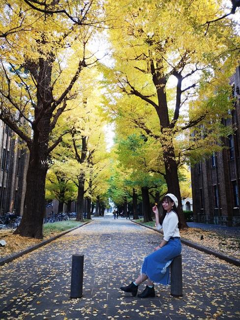 【東京大學銀杏賞楓路線】銀杏天花板,銀杏地毯一次蒐集,超好拍! @小環妞 幸福足跡