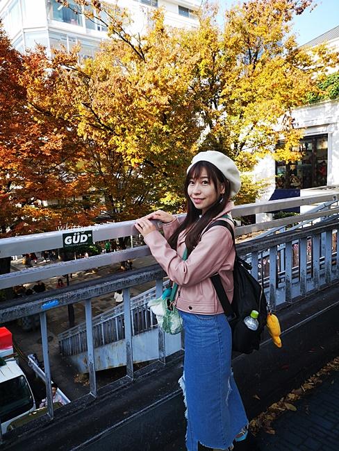 【東京柴犬cafe】原宿乃豆柴咖啡廳,跟小豆柴一起玩耍好療癒阿 @小環妞 幸福足跡