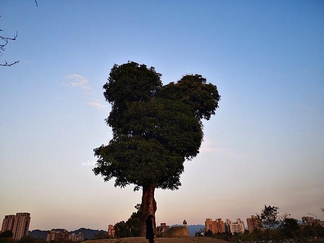 【台中米奇樹】迪士尼樂園現身台灣? 戴上米妮髮箍去找米奇樹! @小環妞 幸福足跡
