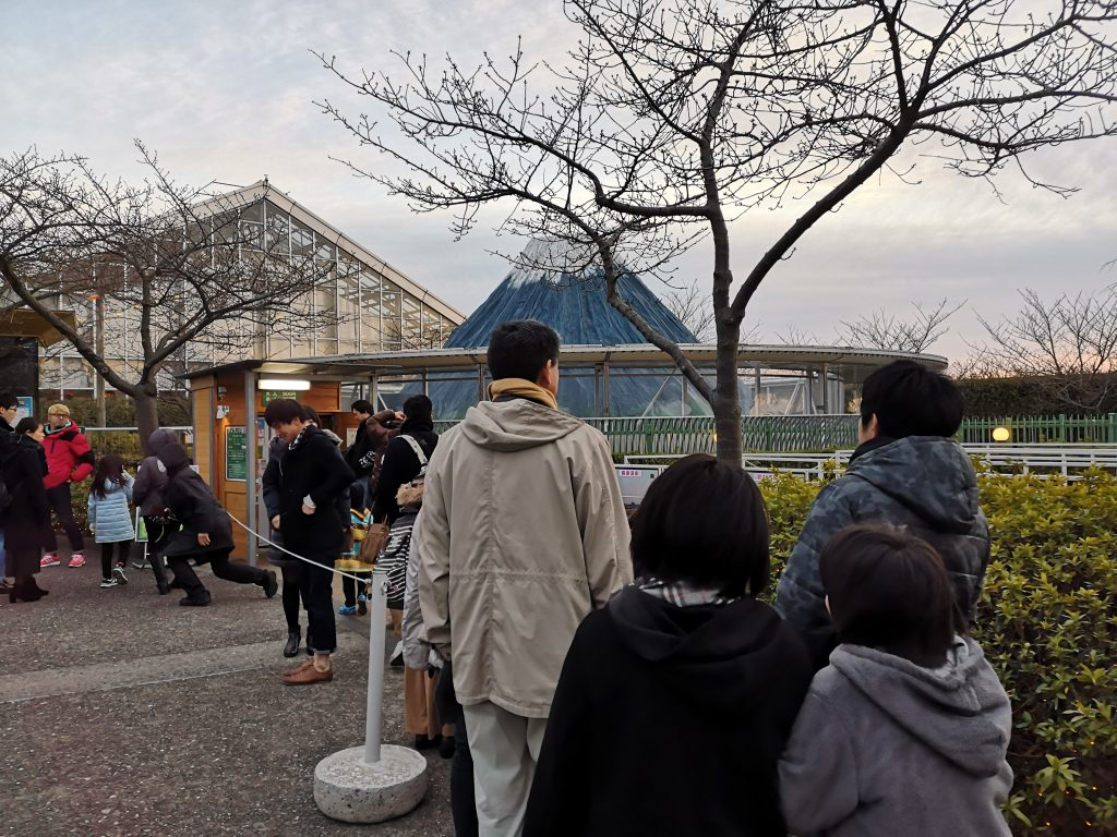 【日本最大燈海】2019~2020名花之里一日遊,大阪出發三重縣,光之迴廊! @小環妞 幸福足跡