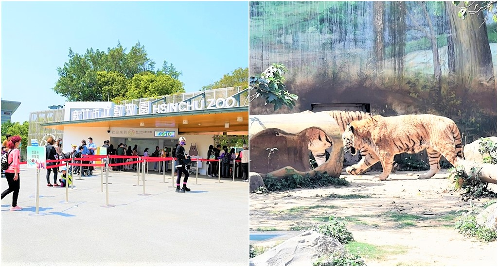 最新推播訊息:【🔥新竹必去動物園🔥】